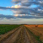 Producătorii nemțeni, sprijiniți de Consiliu Județean Neamț în a face agricultură bio!